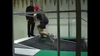 ICESTYLE - Хоккейная беговая дорожка