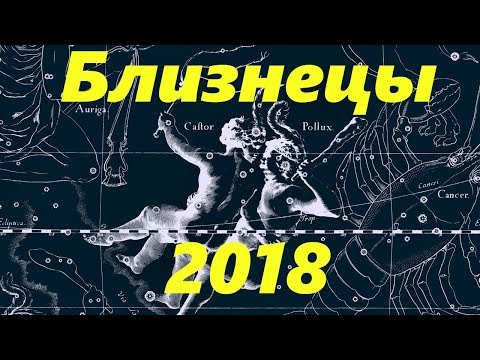 Гороскоп тигра тельца на 2017 год