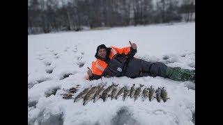 Рыбалка в островского района псковской области