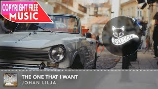 Johan Lilja - The One That I Want - Royalty Free Vlog Music