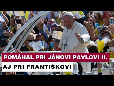 Koľko rokov mal najstarší dobrovoľník pri návšteve pápeža?