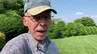 Delaware Backyard 2019