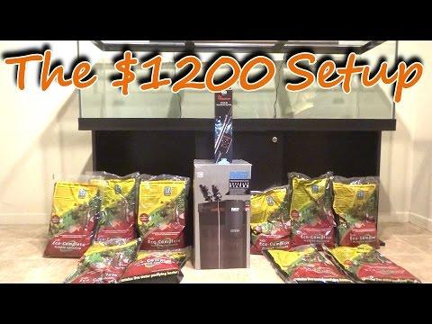 The $1200 dollar fish tank setup!