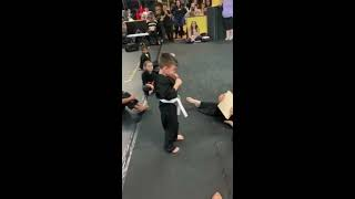 Children In Karate Class Cheer Kid On While Kicking Board   1042142