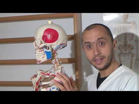 Osteochondrosis intervertebrale di 1 grado