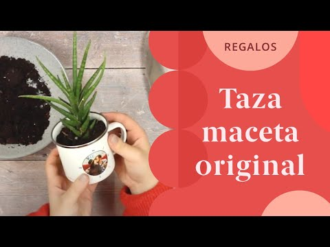 Video - Como regalar una taza personalizada