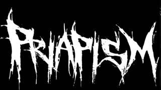 Priapism - Art of War/ Lyric video