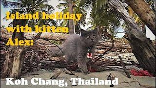 Island Holiday With Kitten, Ep. 1: Koh Chang (Thailand), เกาะช้าง, จังหวัดตราด