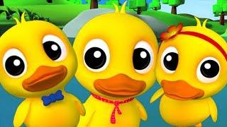 Cinco patos pequenos | rimas de berçário para crianças | Kids Songs | Five Little Ducks Going Out