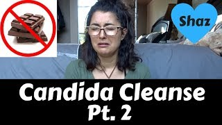 Candida Cleanse Tips   DIET, LIFESTYLE + SUPPLEMENTS