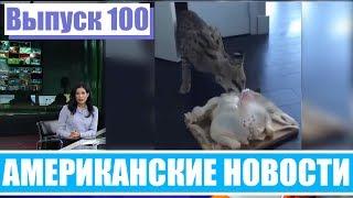 Hack News - Американские новости (Выпуск 100)
