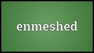 Enmeshed Meaning