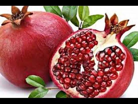La recogida de la bioquímica azúcar en sangre y recuento sanguíneo completo