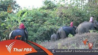 ที่นี่ Thai PBS - นักข่าวพลเมือง : วิถีความเปลี่ยนแปลงระหว่างคนกับช้างที่บ้านปูเต้อ จ.ตาก