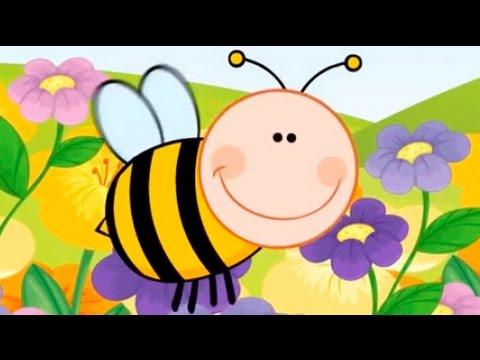 Arı Vız Vız Vız - Bebek Şarkısı