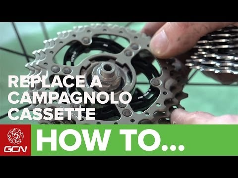 How To Replace A Campagnolo Cassette - GCN's Maintenance Mondays