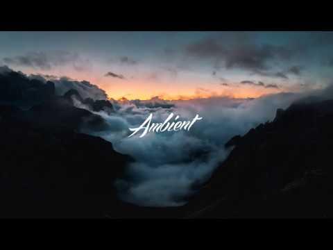 The Ambientalist - A Children's Dream