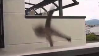 Толстый кот упал / Fat cat fell