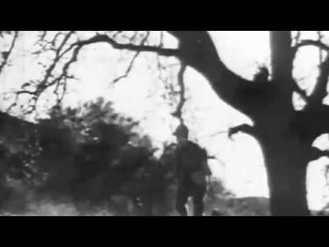 The Fate of Modern Man - Simon Bell