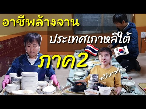 อาชีพล้างจานที่ต่างประเทศ | ประเทศเกาหลีใต้ |ร้านอาหาร|คำศัพท์ภาษาเกาหลี | สะใภ้เกาหลี by Korean |