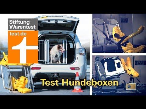 Test Hundeboxen fürs Auto: Welche am besten schützen (Vergleichstest Hundetransport)