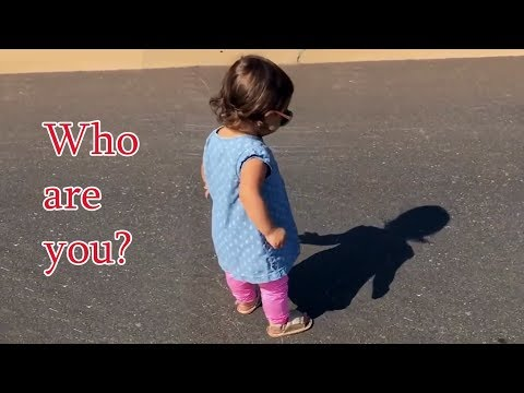 Hilarious - Babies Discovering the Concept of Shadows