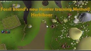 herbiboar - Kênh video giải trí dành cho thiếu nhi - KidsClip Net