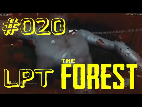 THE FOREST [HD] #020 - LPT - Besuch im Camp ★ Let's Play Together The Forest