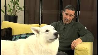 TV Budakalász / Dr. Szalkai László/ 2021.01. 27.