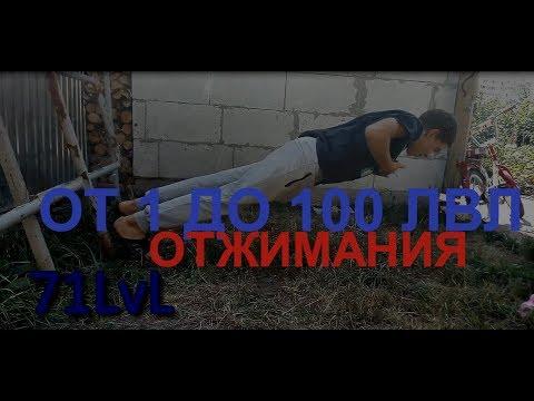 ОТЖИМАНИЯ ОТ 1 ДО 100 ЛВЛ(ПО ВЕРСИИ СПОРТ-ЛЕГКО)