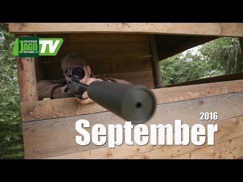 Schalenwild-Quartett, Städter am Wild u. Besuch beim Kitz-Profi - DJZ-TV 9/2016