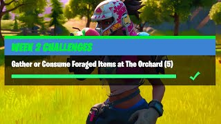 Gather or Consume Foraged Items at The Orchard (5) - Fortnite Week 2 Challenges