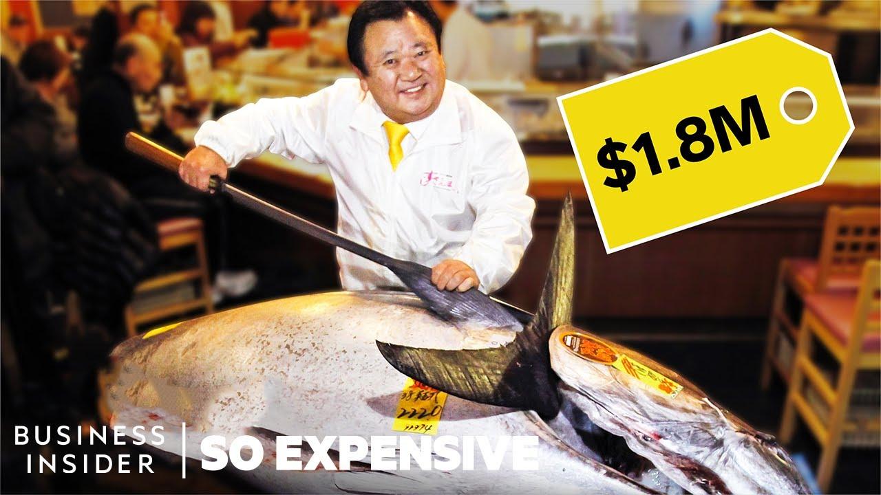 Mengapa Ikan Tuna Bluefin Berharga Milyaran?