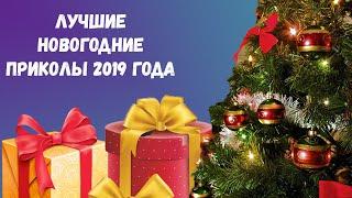 Лучшие приколы   нового  2019 года