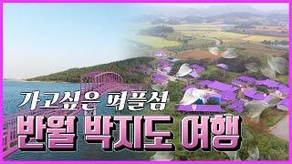 '양말도, 빤스도 보라색!! 반월&박지도 여행' 동영상 배경 썸네일