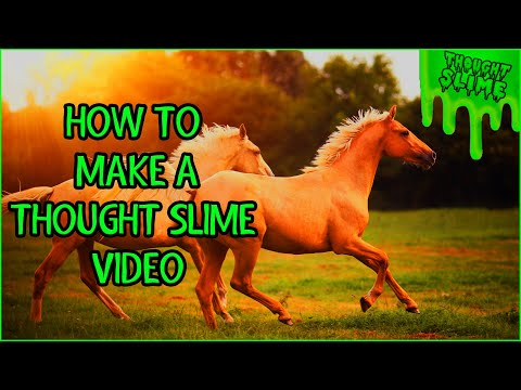 How to make a thought slime video: A guide for fun and profit.