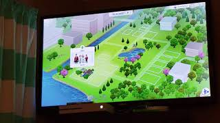 How to add a sim to your current household on console