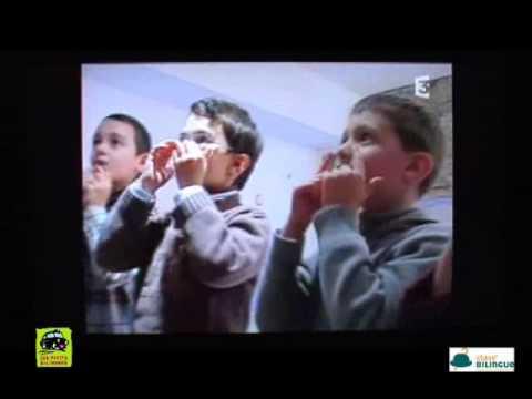 Les Petits Bilingues Lyon 2 - Petit Paumé