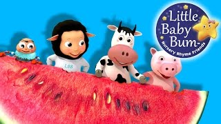 Down By The Bay | Nursery Rhymes | By LittleBabyBum! | ABCs and 123s