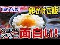 【海外の反応】卵かけご飯の外国人の反応が面白い!卵かけご飯は外国人からは賛否両論www