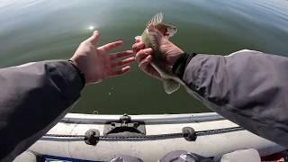 Место для рыбалки на удочку новосибирск