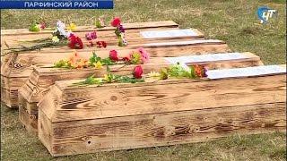 В Парфинском районе на захоронении «Ясная поляна» были преданы земле останки почти 500 советских солдат и офицеров
