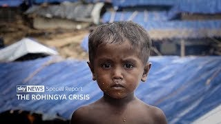 The Rohingya crisis - special report