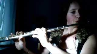 Pink Panther theme Flute cover