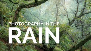 Photography in the Rain  - Why I love it