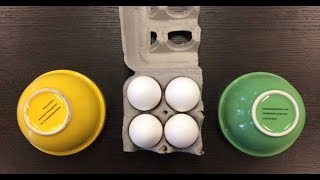 The Best Way To Separate Egg Yolk From Egg Whites