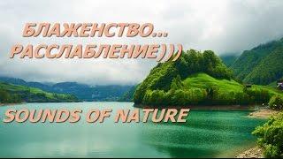 Звуки Природы ~ Расслабляющая Музыка ~  Музыка для сна