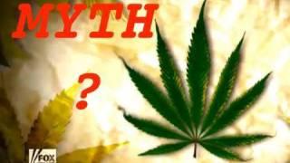 Fox News Marijuana Straw Man on Legalization?