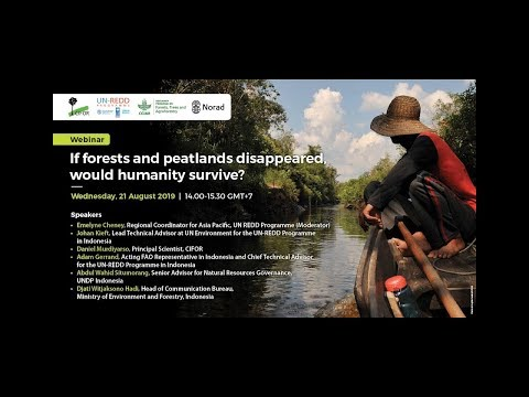 Webinar If forests and peatlands disappeared, would humanity survive?