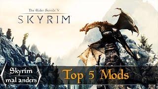 5 Mods, die jeder haben sollte - Skyrim mal anders